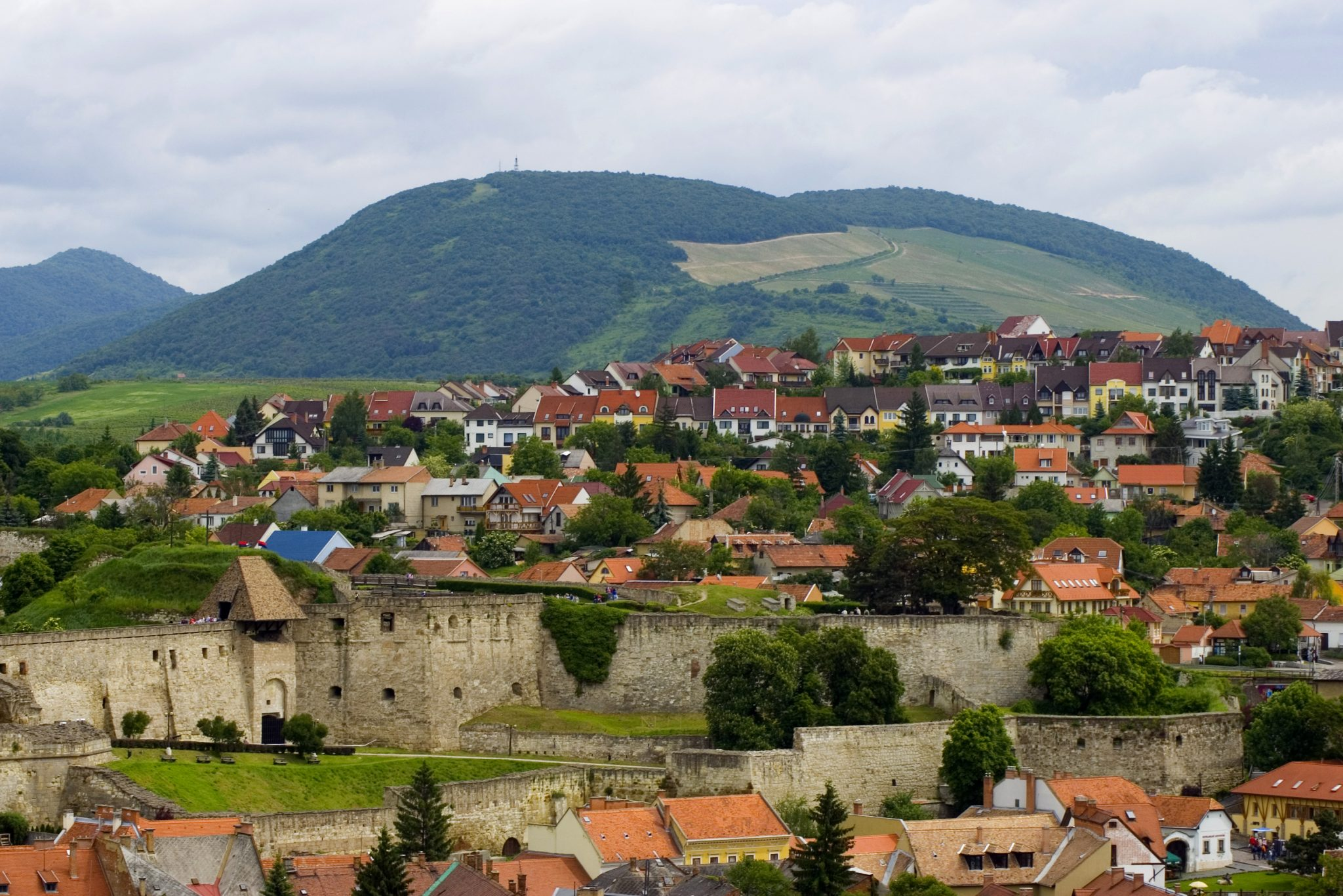 Eger PDO: A Guide to the Wine Region — Taste Hungary